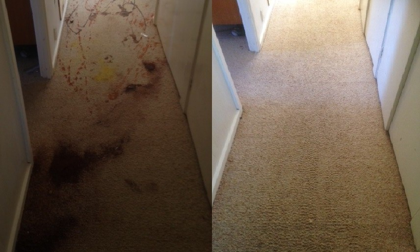 Before and After  Sauce Stains Carpet Cleaning in Canberra