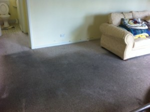 Very Dirty Carpet (Before)