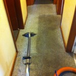 Very Dirty Carpet - Carpet Cleaning Canberra